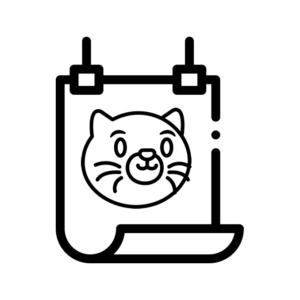 Постери з котом